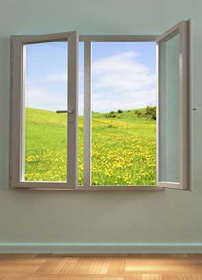 open window of opportunity